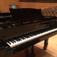 Piano Steinway / Nans Bart, pianiste